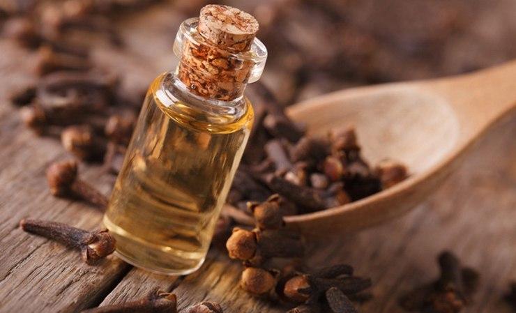 ätherisches Öl der Nelke