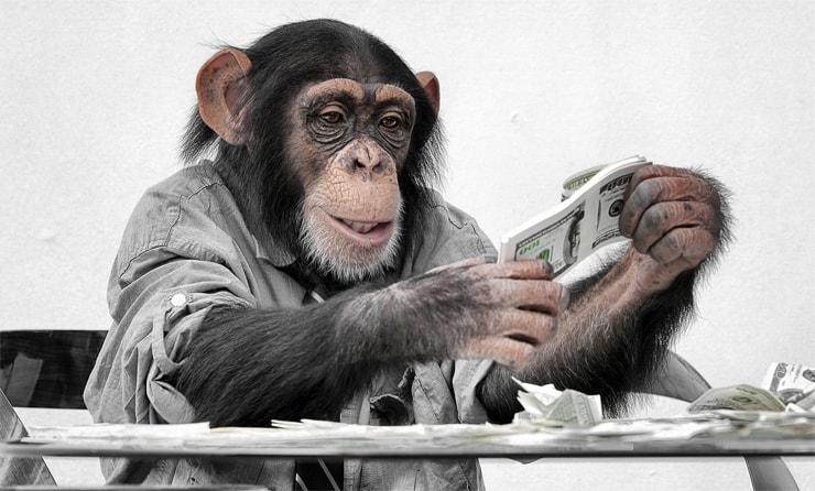 Affe mit Geld